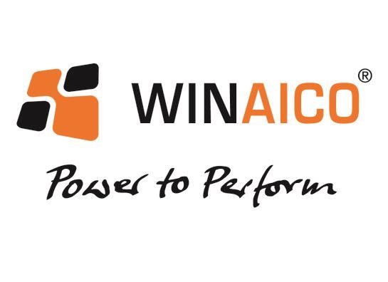 WINAICO Tier 1 Panel