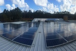Black Brewing Co 100kW Solar