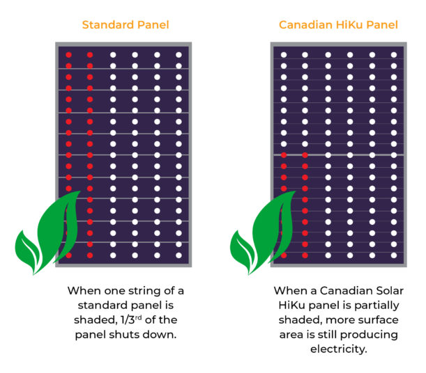 New Release Canadian Solar Hiku Dual Cell Panels Infinite